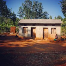 Tanzanian Toilets and Real Life Lion King!